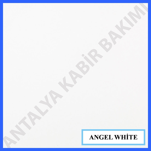 angel_white_27185