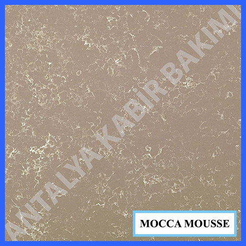 mocca_mousse_86aa6