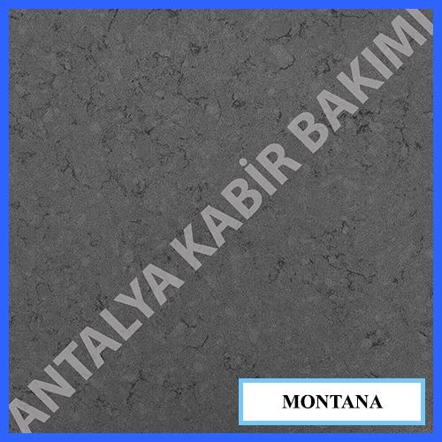 montana_80542