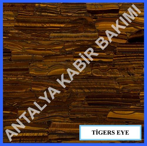 Tegers Eye