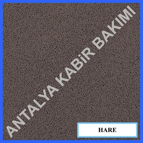 HARE 4003