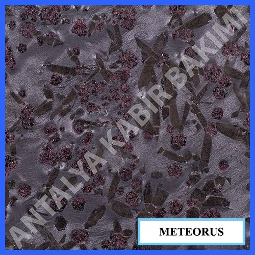 meteorus