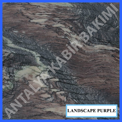 landscapepurple