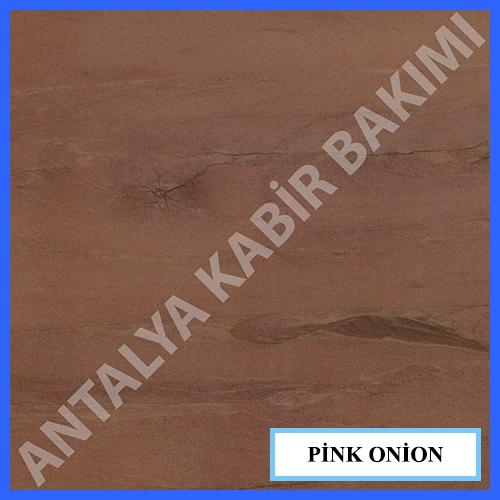 pink-onion